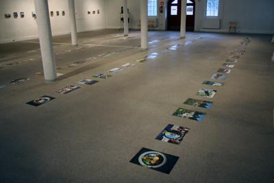 Metamorphosis - exhibition view
